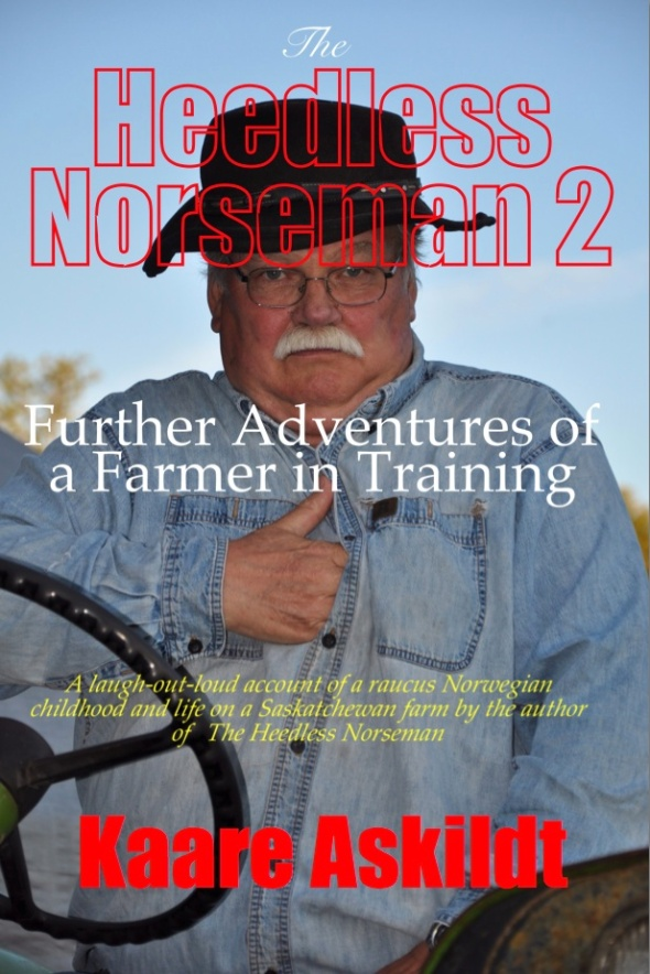 Heedless Norseman 2 Front Cover